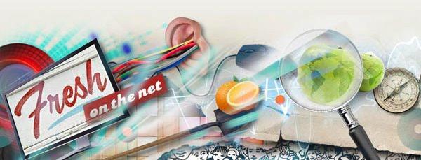 Fresh On The Net logo